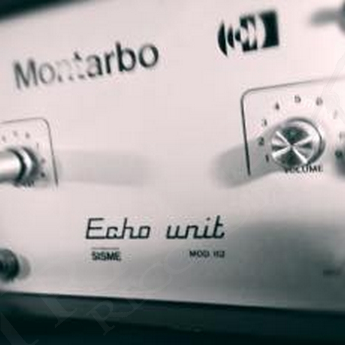Montarbo Echo Unit
