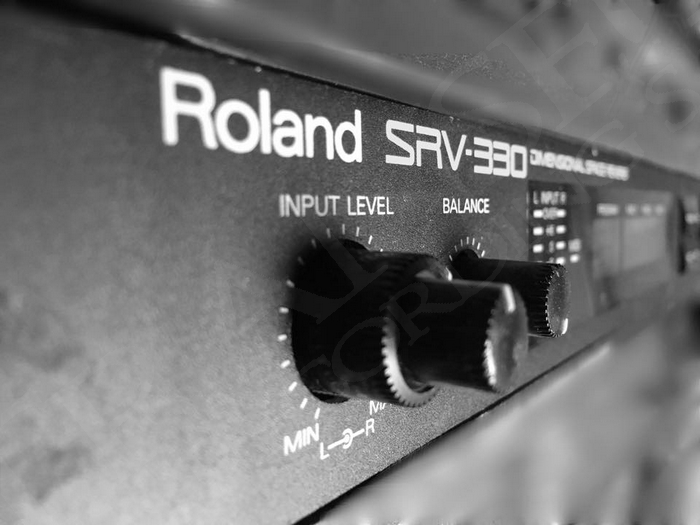 Roland SRV 330 Dimensional Space Reverb